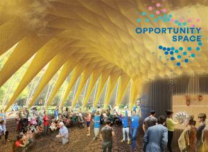 Opportunity Space Festival_pavilion concept